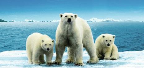 StoTherm Classic Προστασία του κλίματος