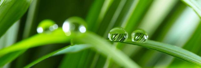 Περιβάλλον Προστατεύοντας το, προστατεύουμε τη ζωή μας